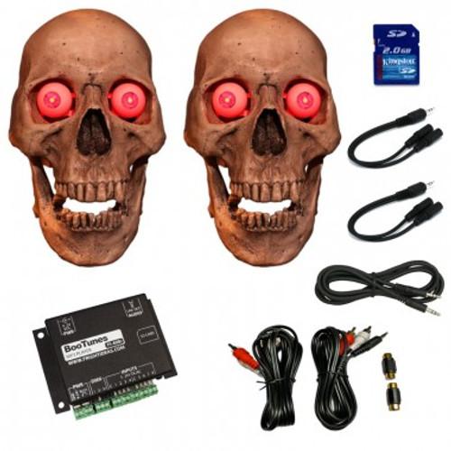 Duel Talking Skull Kit