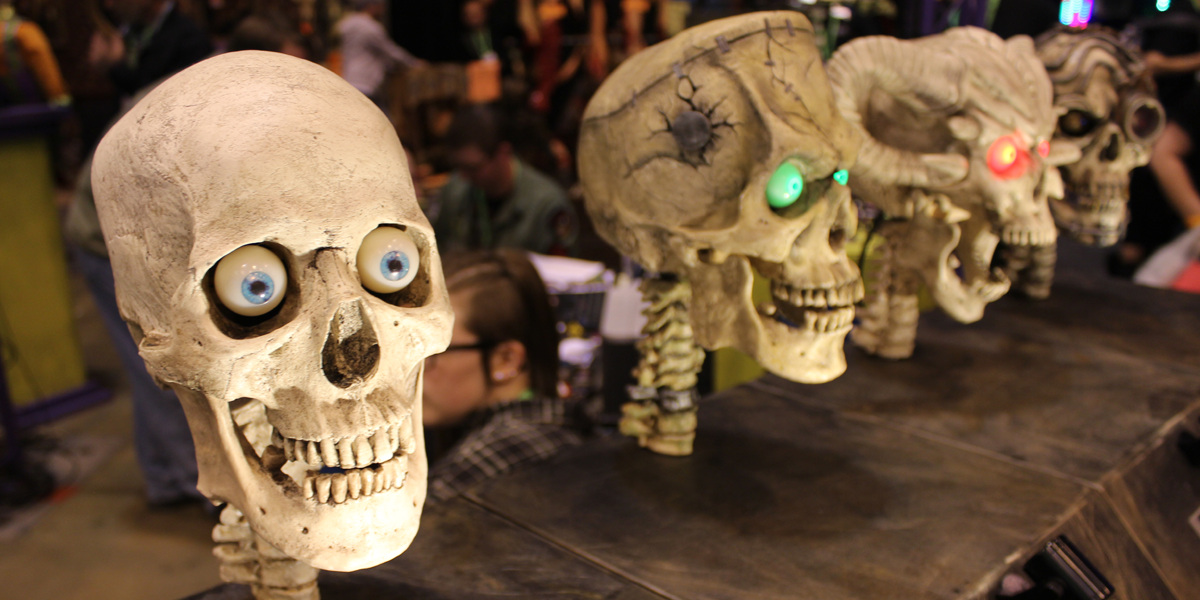 Skull Display Transworld