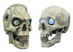 skulls-two.jpg