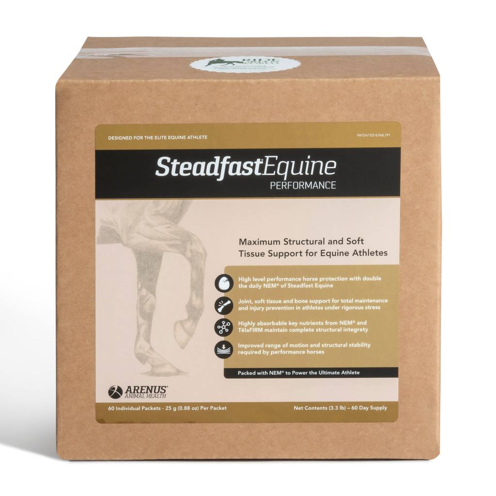 Steadfast Equine Performance