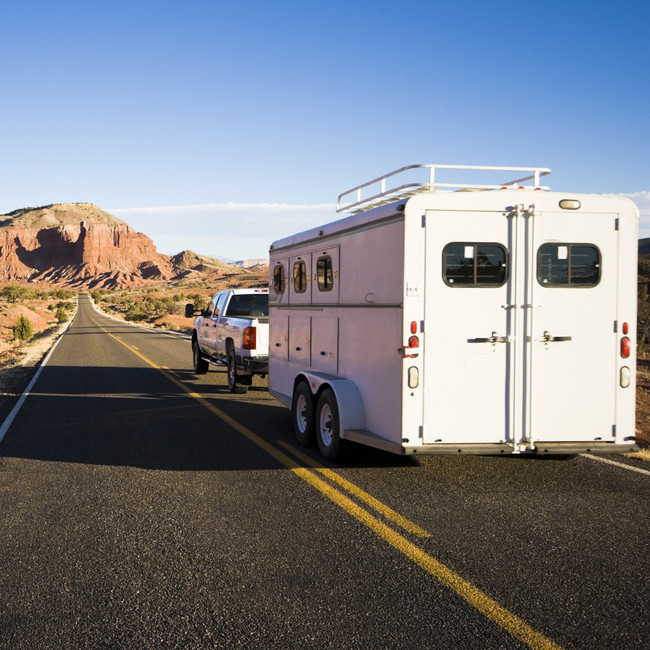 20 Things You Should Never Haul Your Horse Without.