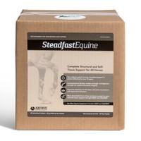 Steadfast Equine
