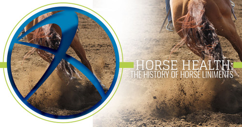Horse Health: The History of Horse Liniments