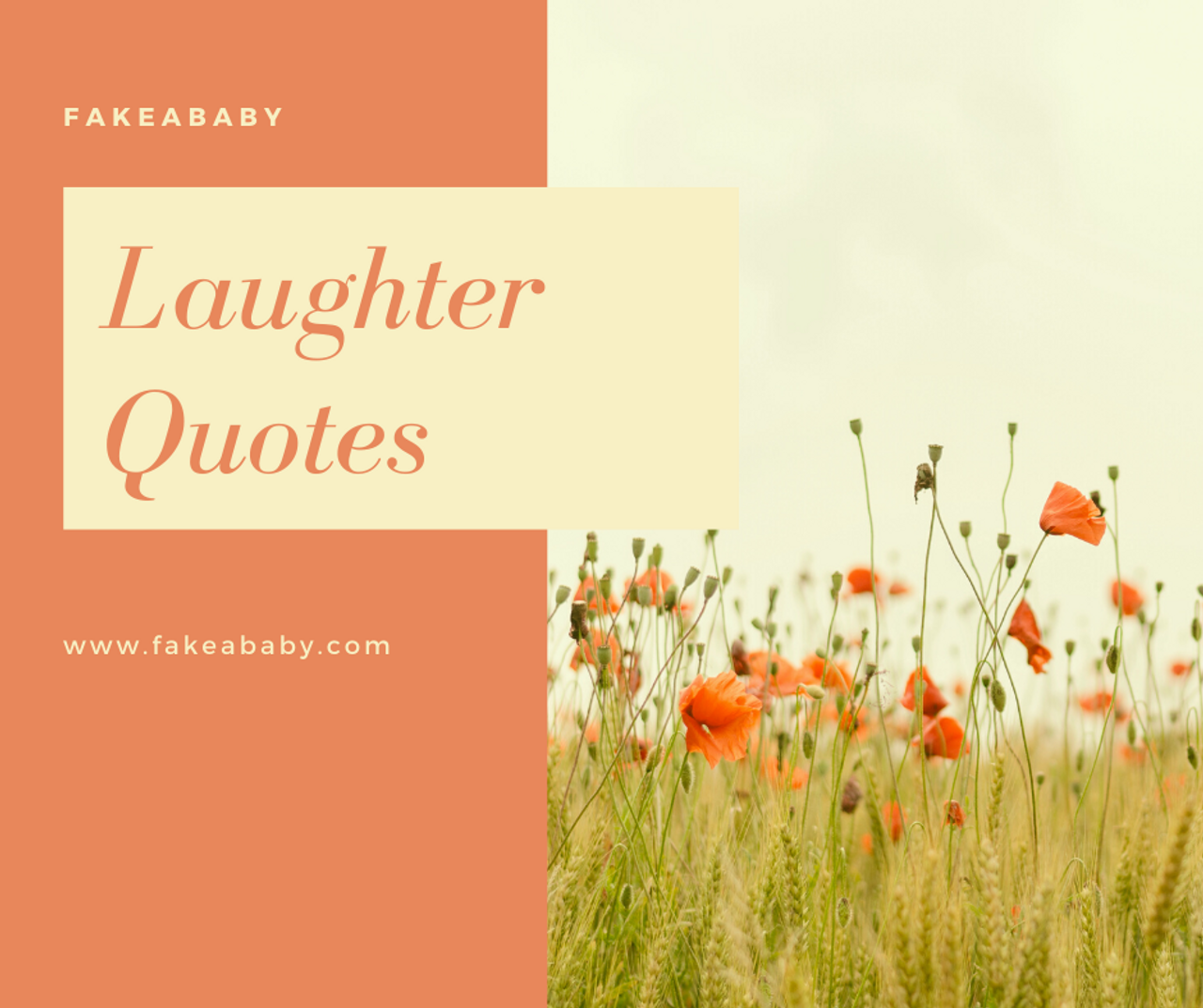 The Best Laughter Quotes