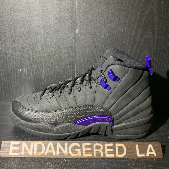 Air Jordan 12 Dark Concord Sz 5