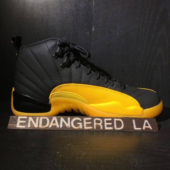 Air Jordan 12 University Gold Sz 12 (#18087)