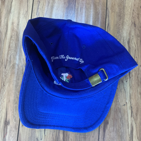 From The Ground Up LA Dad Hat Blue (#6847)