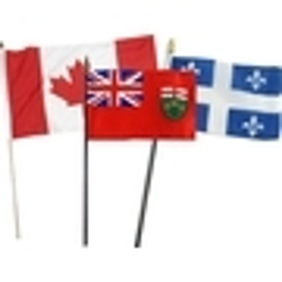 Canadian Stick Flags
