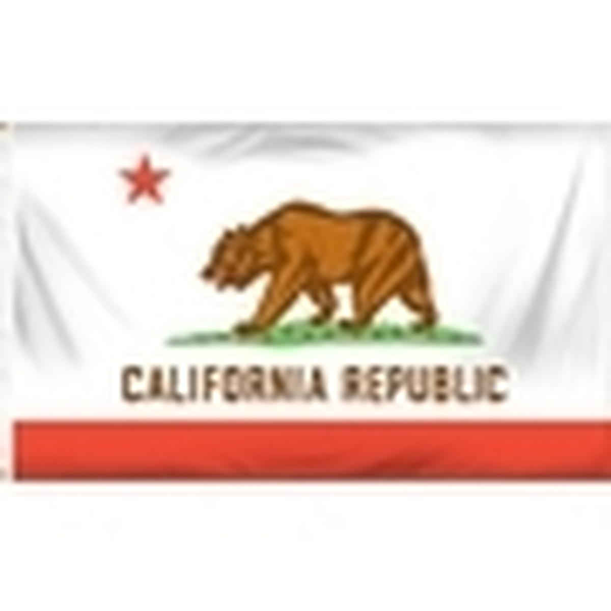 State Low Cost Polyester Flags
