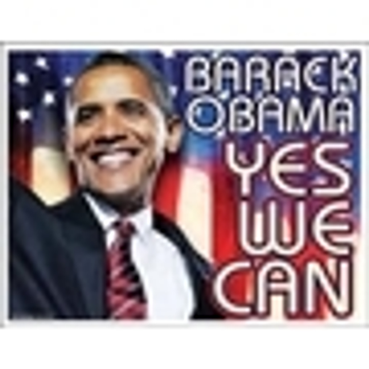 Obama Flags, Pins, Bumper Stickers