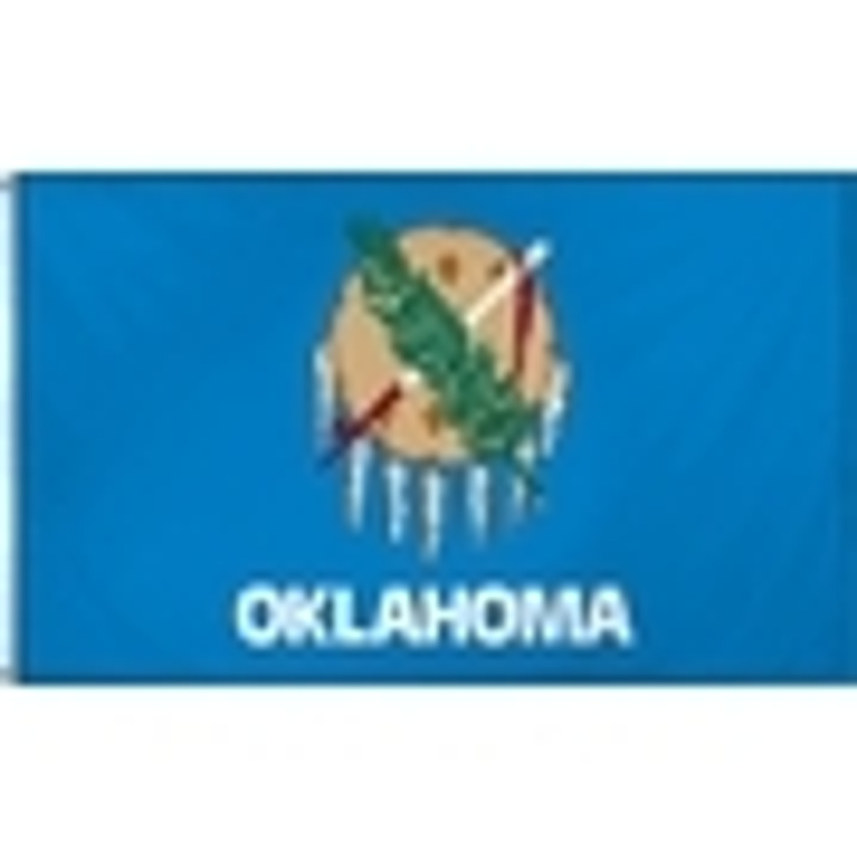 US State Flags 2ftx3ft Nylon