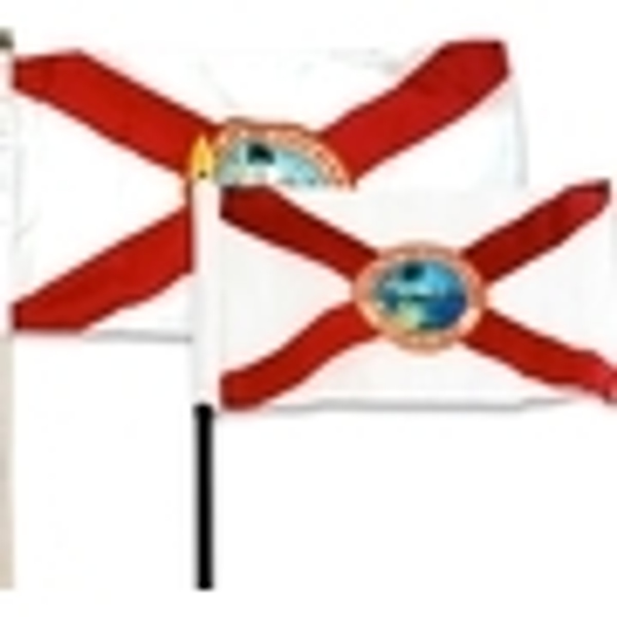 Small Florida Flags