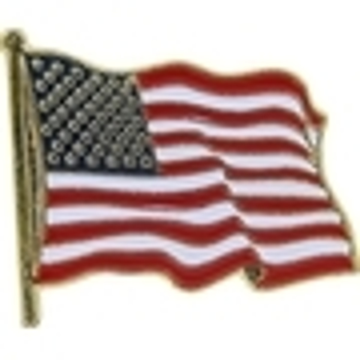 United States and Patriotic Pins