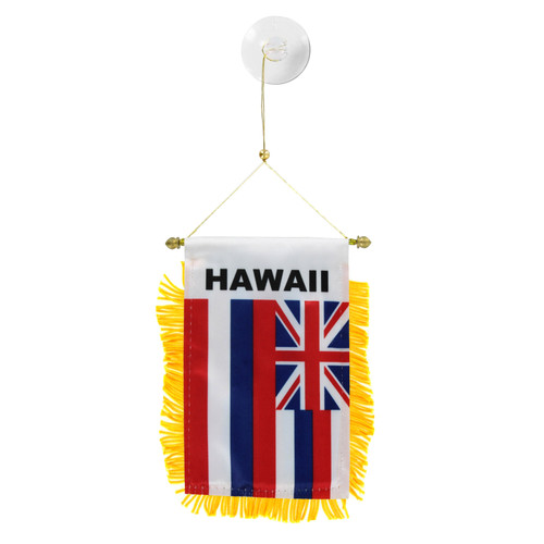 Hawaii Mini Window Banner