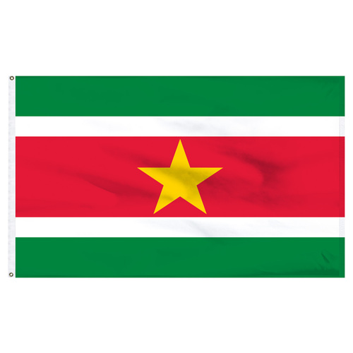 Suriname 5' x 8' Nylon Flag