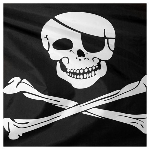 3ft x 5ft Pirate Flag - Printed Polyester