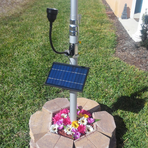Solar Cree Light