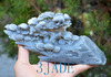 White-Grey Nephrite Jade WITHERED PINE TREE REVIVE Sculpture Hand Carved Bonsai Tree