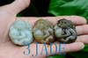 Nephrite Jade Monkey Peach Pendant Wholesale