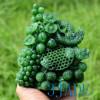 Carved Jade Flower Basket