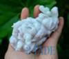 Jade Feng Shui Cabbage