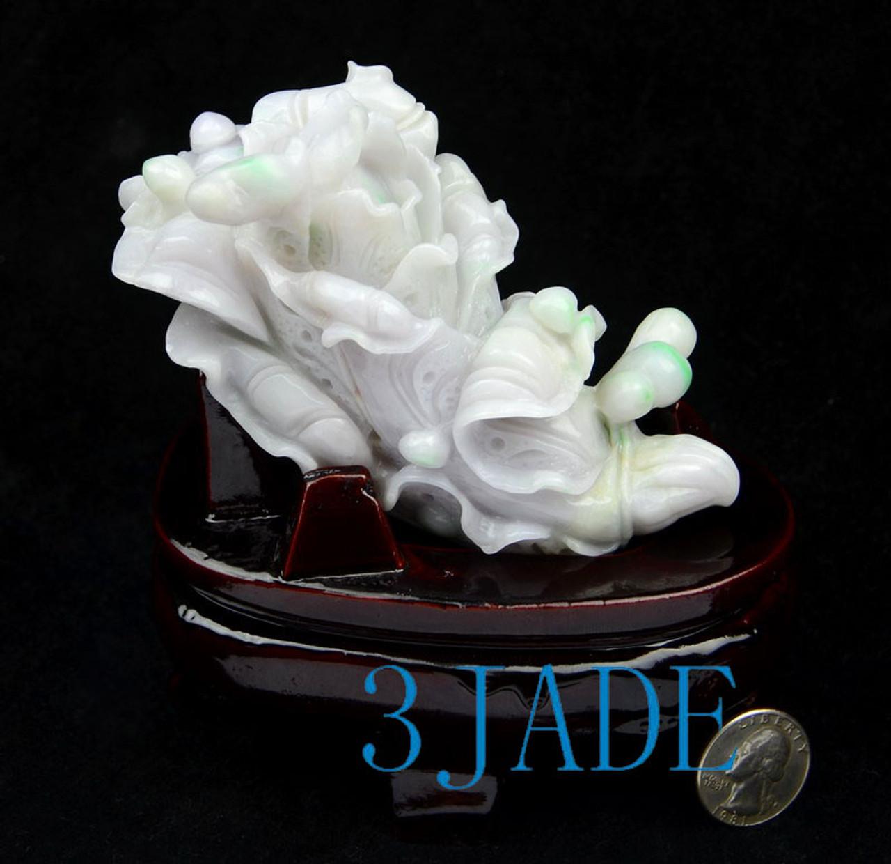 Jade Bok Choy