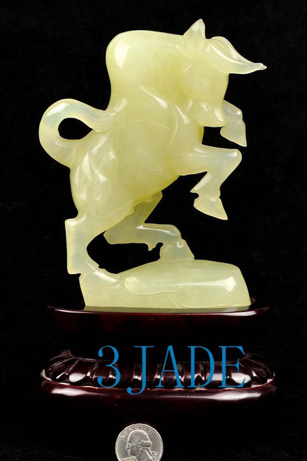 Xiu jade fighting bull