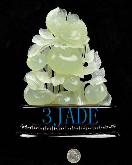 Xiu jade bird flower