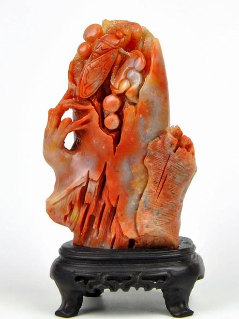 stone cicada