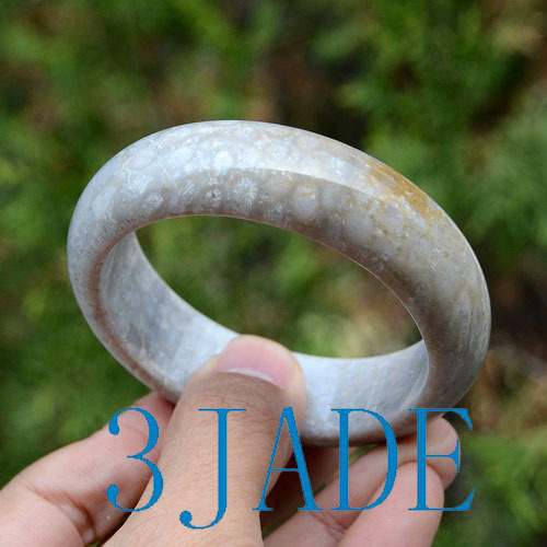 agatized fossil coral bangle