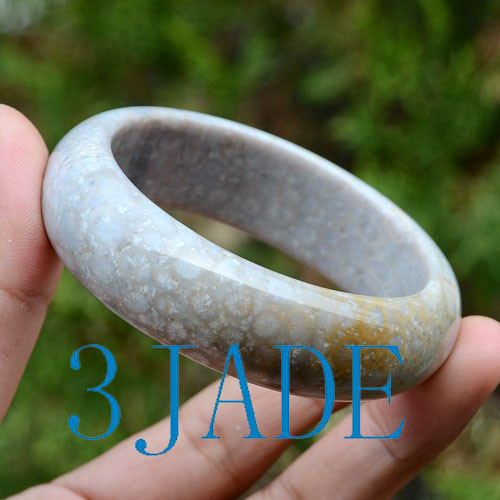 Coral Fossil Bangle