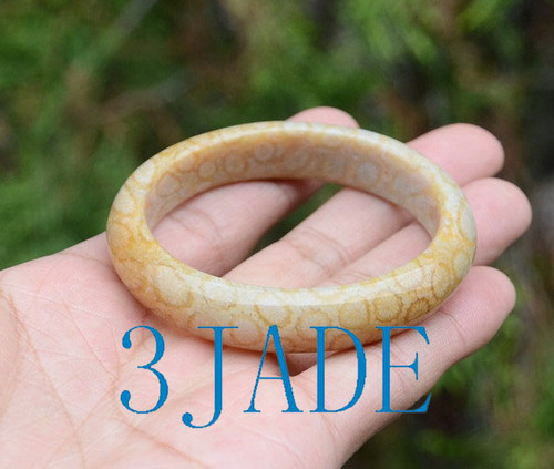 52.5mm coral fossil bangle