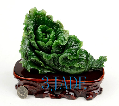Green Jade Cabbage