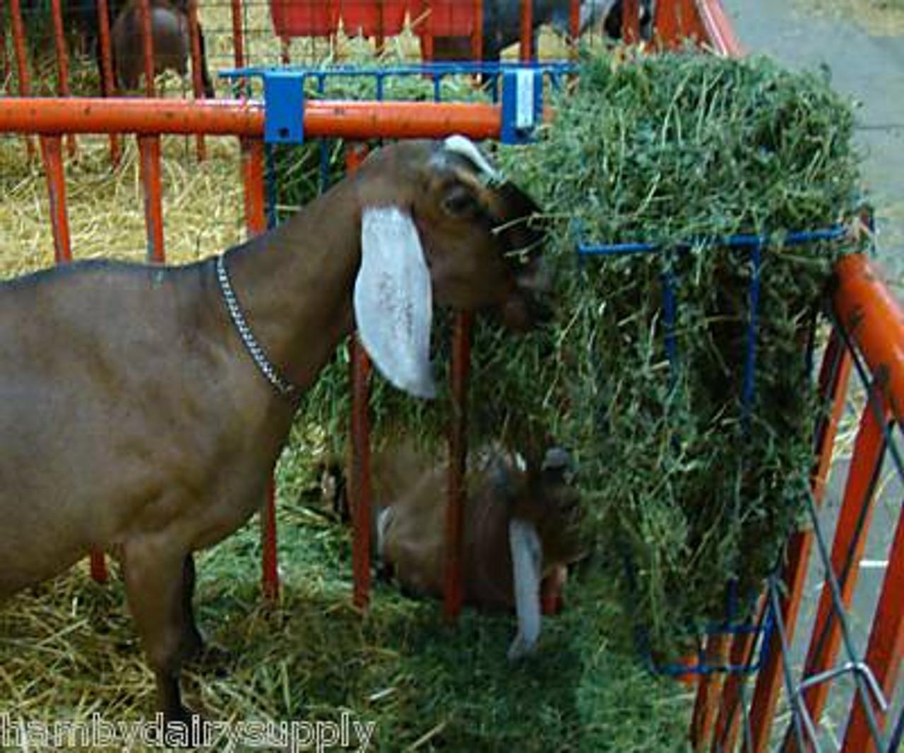 Sheep Hay Feeder Goat Free Shipping Or Alpaca Business Industrial Sheep Goat Alberdi Com Mx