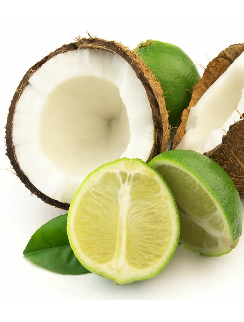 Coconut Lime Lip Balm Petroleum Free All Natural