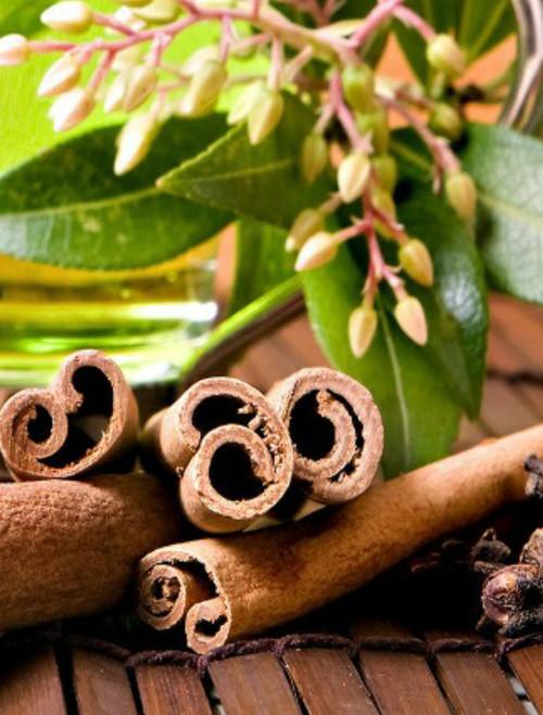 Warm & Spicy Vanilla Chai Moisturizing Lotion Vitamin E enriched