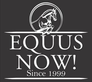 945b228df Cheata Lock Down Bra - Nude - Equus Now!