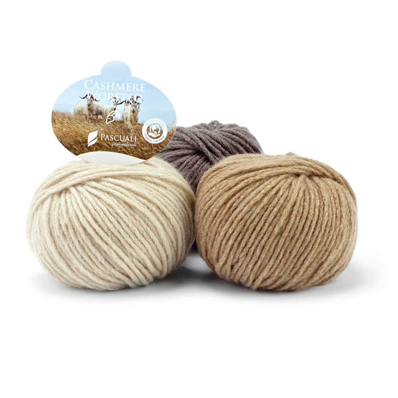 Organic Cashmere Worsted by Pascuali