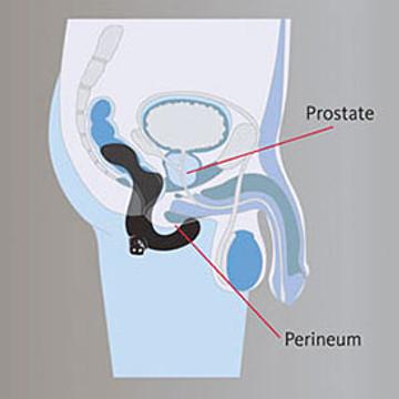Fun Factory Prostate Stimulator