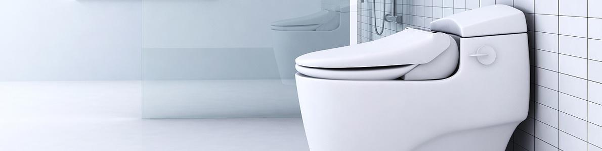 Bidet Toilet Combo Toilet Bidet Combo