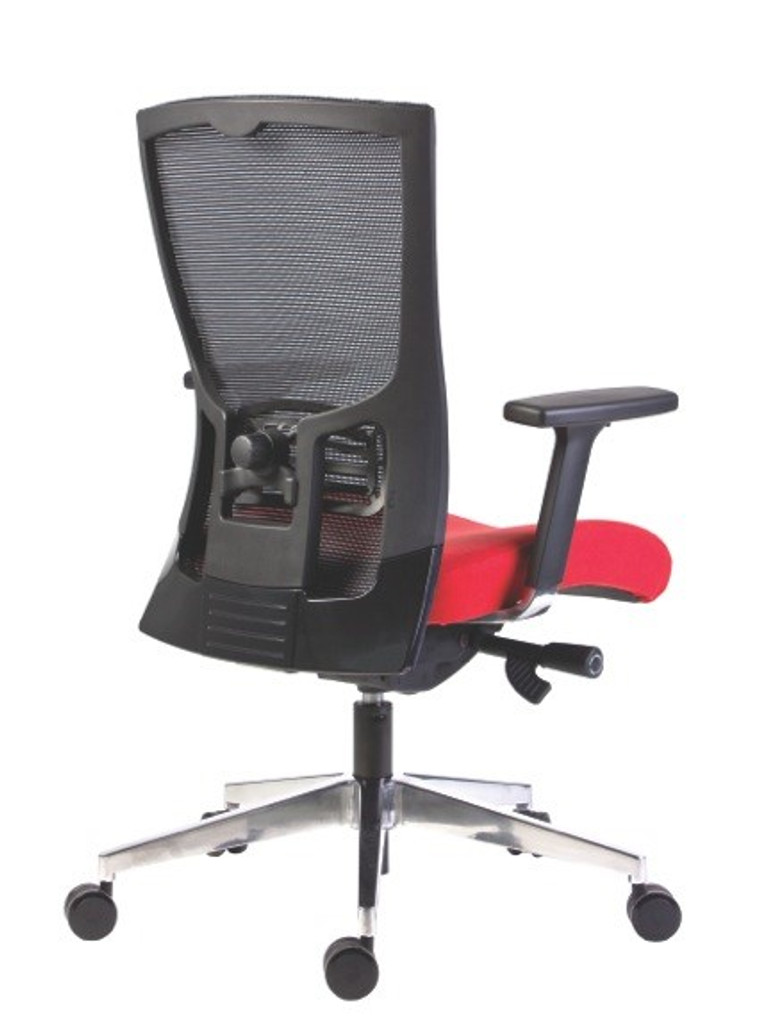 Back view showing the unique lumbar adjustment