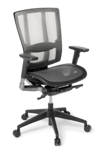 Cloud Ergo chair mesh seat with arms