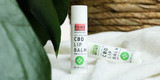 5 CBD Lip Balm Benefits For Healthy Lips