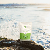 Wheatgrass getting splashed by the fierce less ocean waves