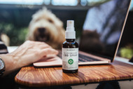 What Does CBD Feel Like? Benefits You'll Love And Side Effects