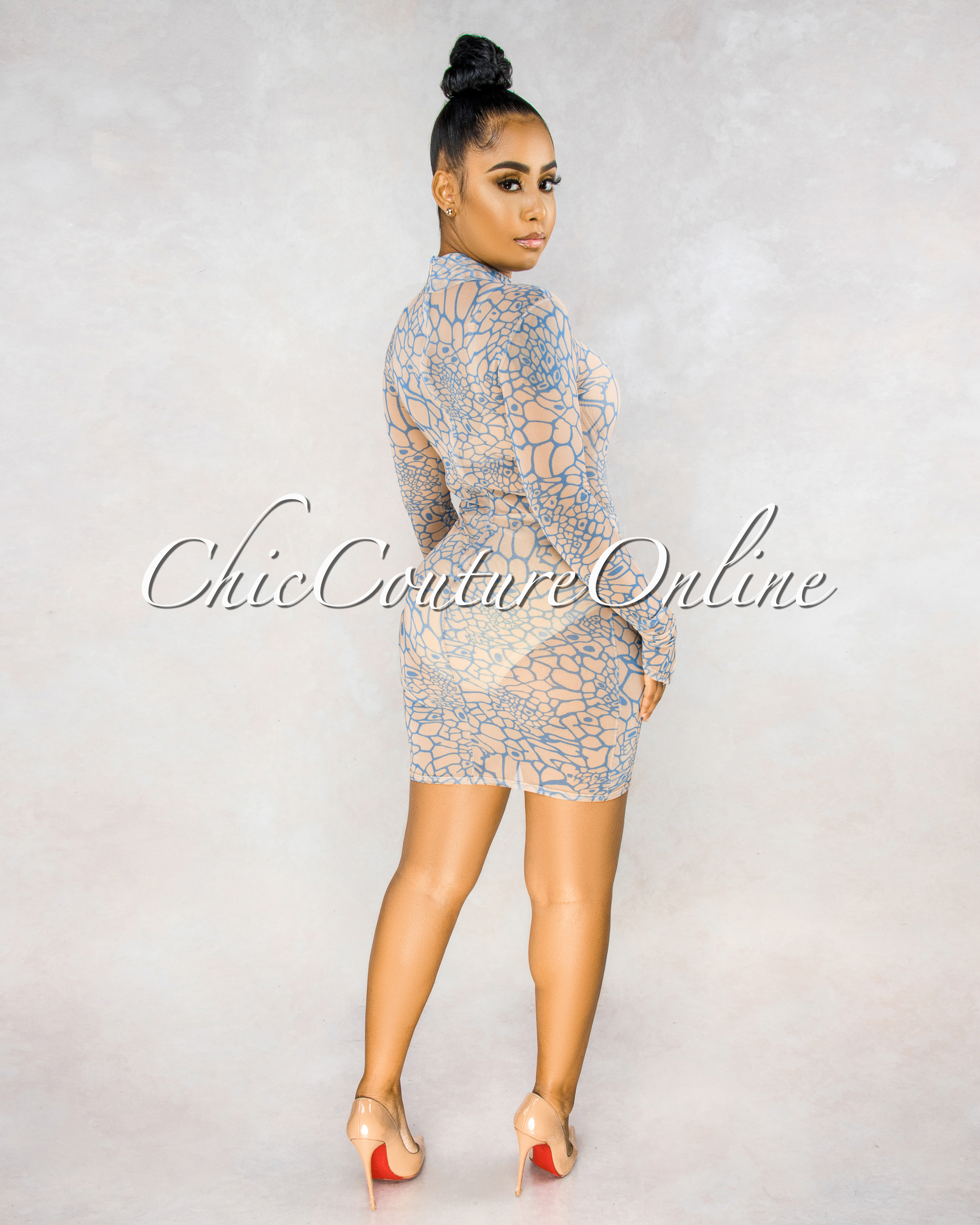 Bauer Nude Turquoise Print Sheer Mesh Long Sleeves Dress