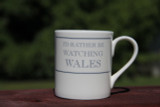I'd Rather be Watching Wales