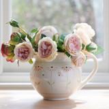 Susie Watson pottery Echinacea Rose Jug.