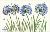 Agapanthus 100% cotton tea towel from Emma Ball.