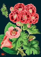 Pink Geranium Greetings Card by Madame Treacle.